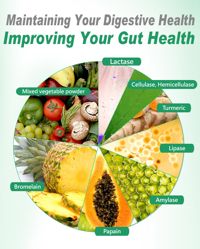 BHK's plant enzymes maintain people's digestive health and improve gut health