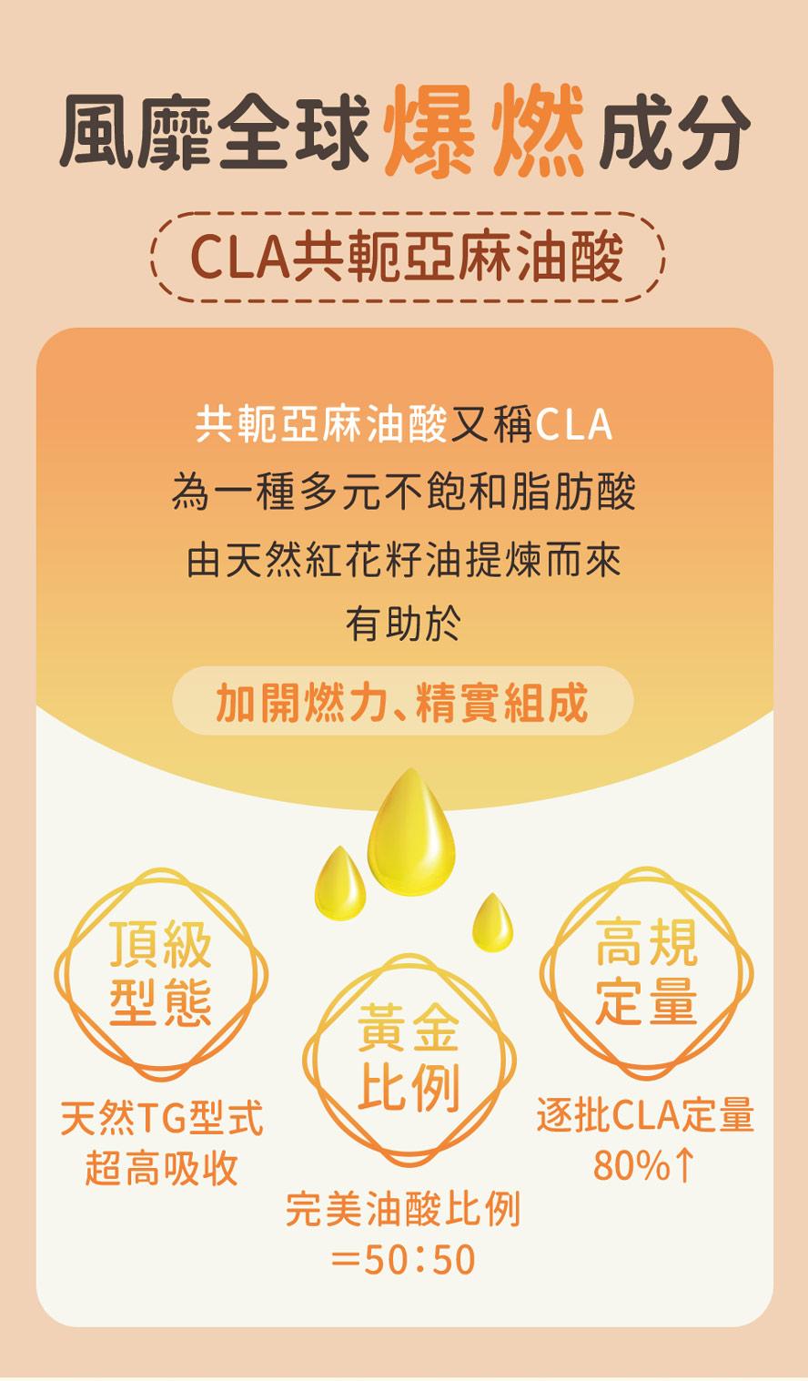 BHK's紅花籽油採天然TG型式好吸收,油酸比例50:50,幫助窈窕更有感