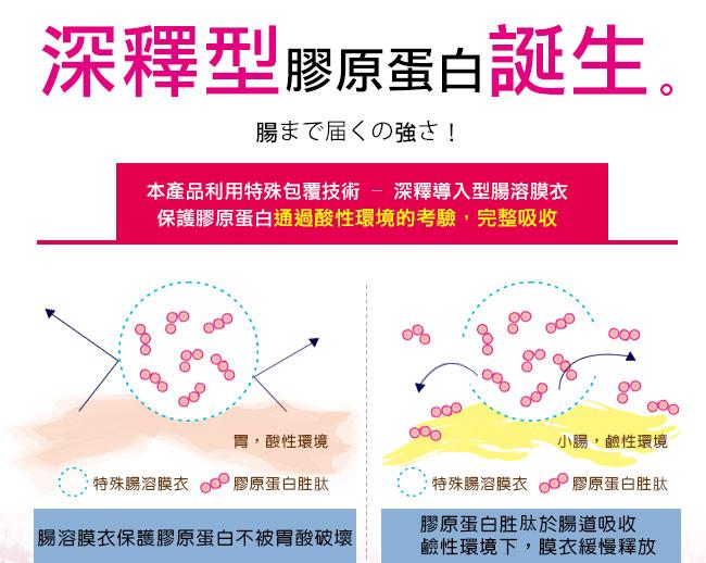 深釋導入型腸溶膜衣保護膠原蛋白不受胃酸破壞