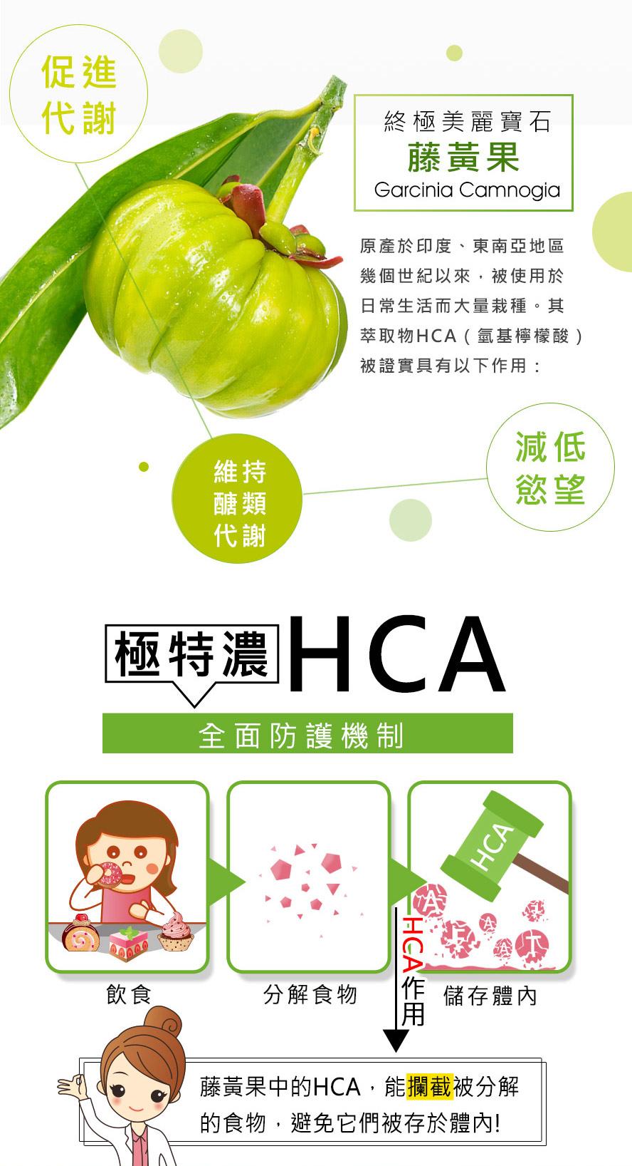 BHK藤黃果促進代謝,加強醣類快速代謝,有效降低甜食慾望。
