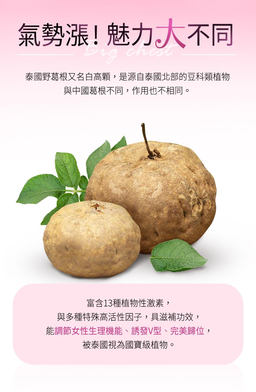 泰國野葛跟又名白高顆,與中國葛根的作用不同,含13種植物性雌激素、高活性因子,可以有效刺激乳房二度發育,幫助罩杯升級。
