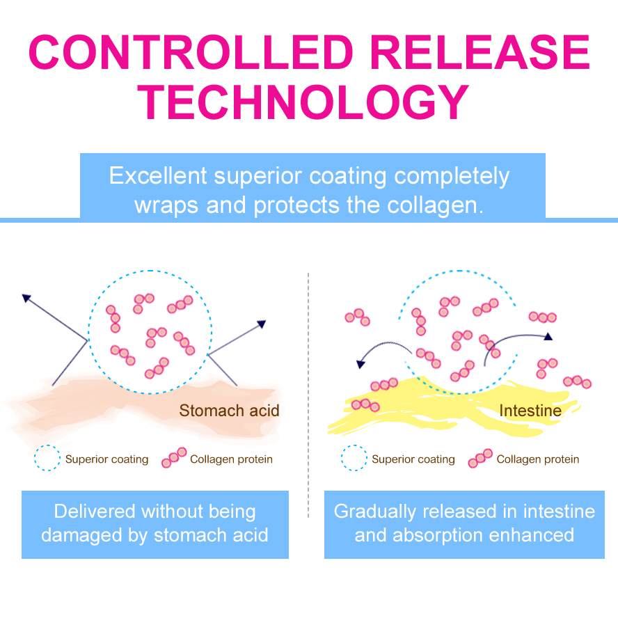 Collagen protein delivered without being damaged by stomach acid