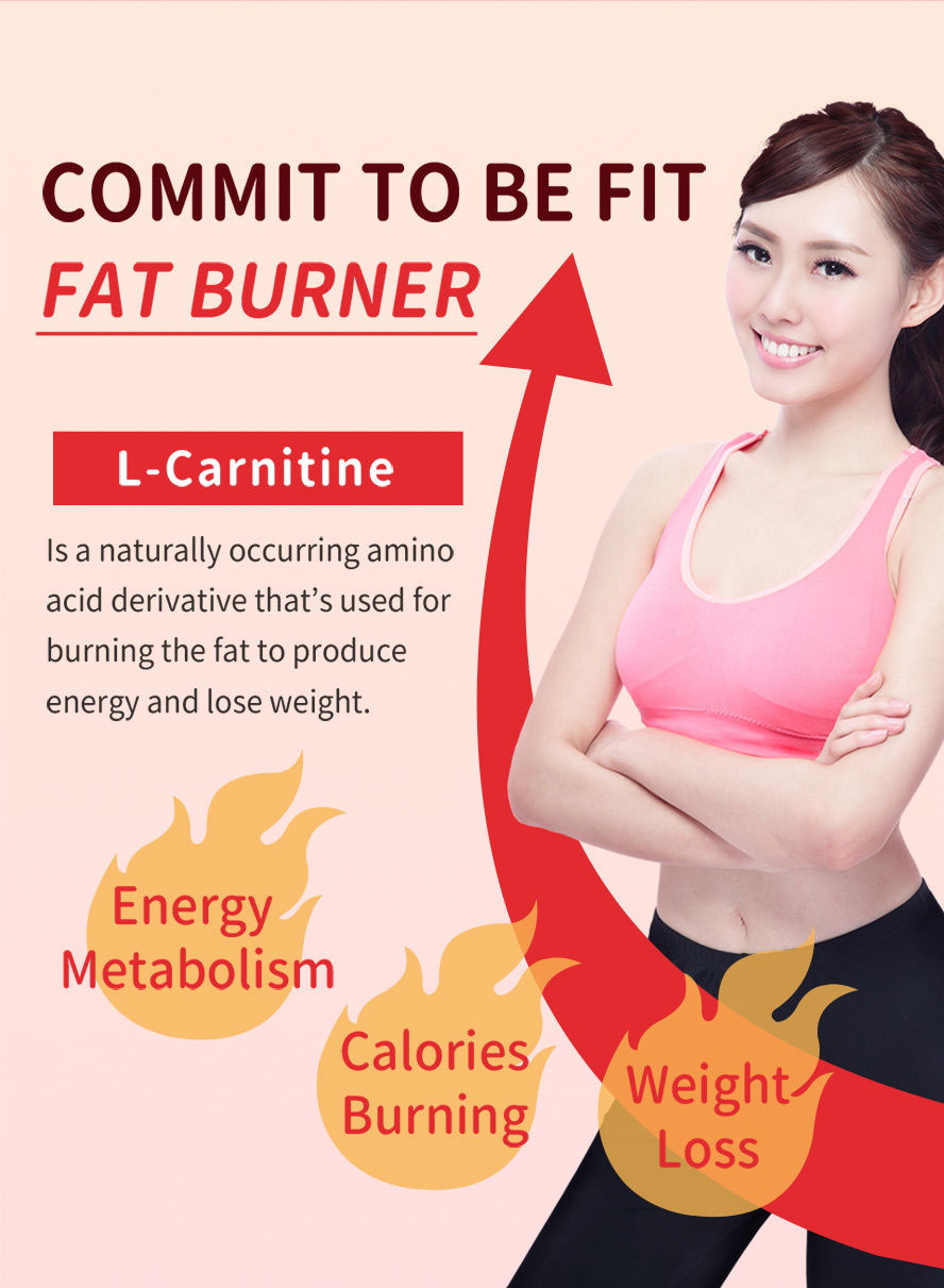 BHK's L-carnitine is an amino acid, it can transport fatty acids and boost cellular energy