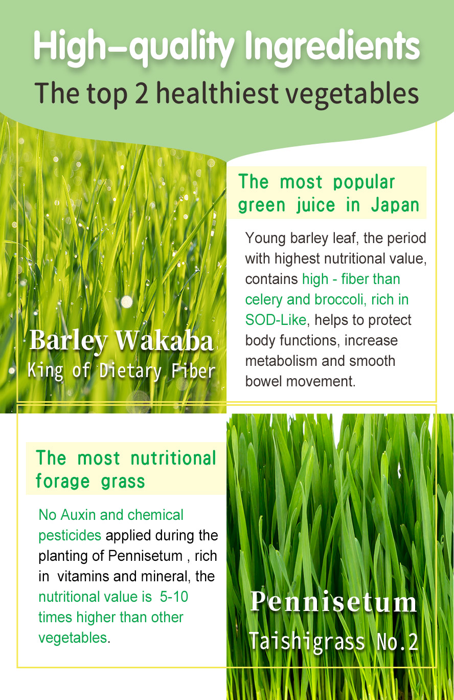 BHK's green juice superfood uses young barley grass, the most nutritionally balanced food in nature.