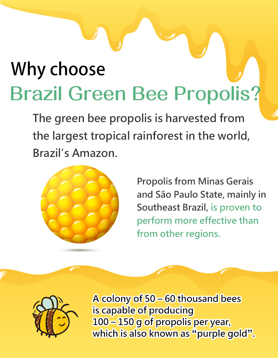 BHK's propolis lozenges uses the best source of propolis, Brazilian green bee propolis.