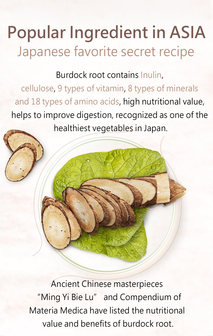 BHK's Burdock Root is sometimes called the Eastern ginseng for its benefits
