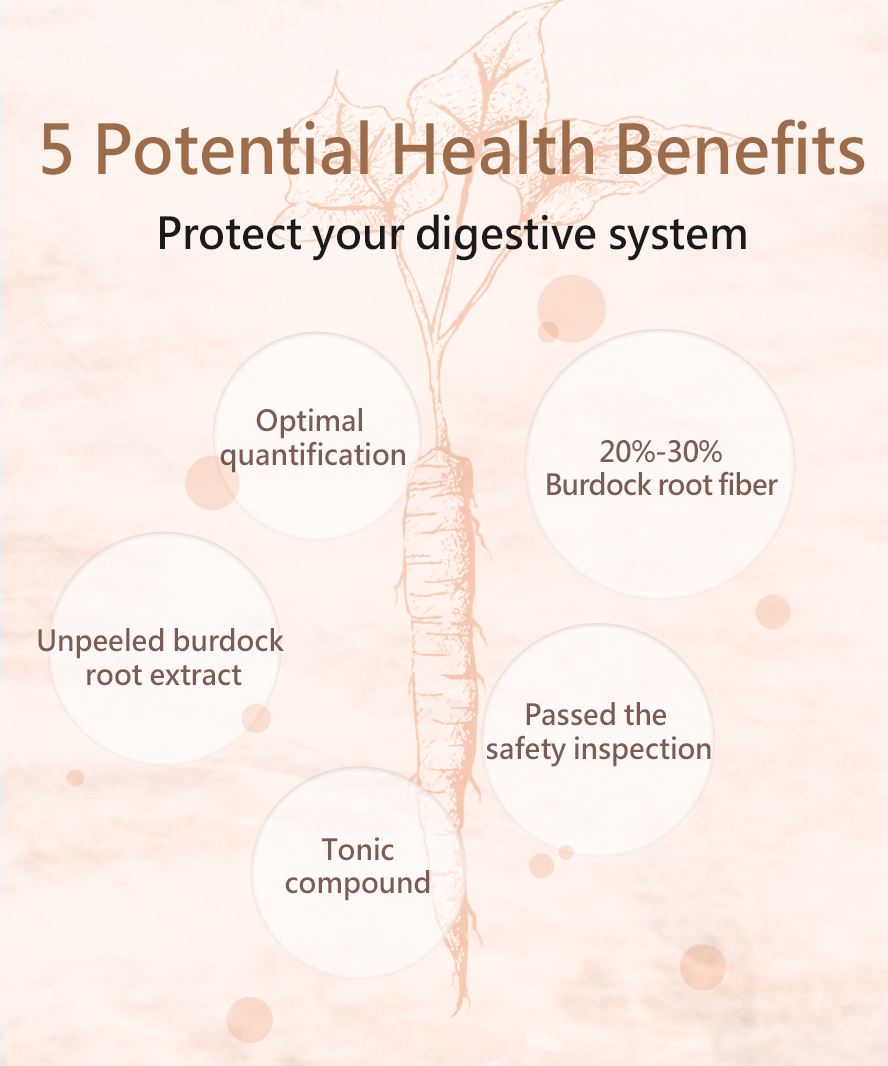 BHK's Burdock Root's ability to aid digestion as well as gastrointestinal health.