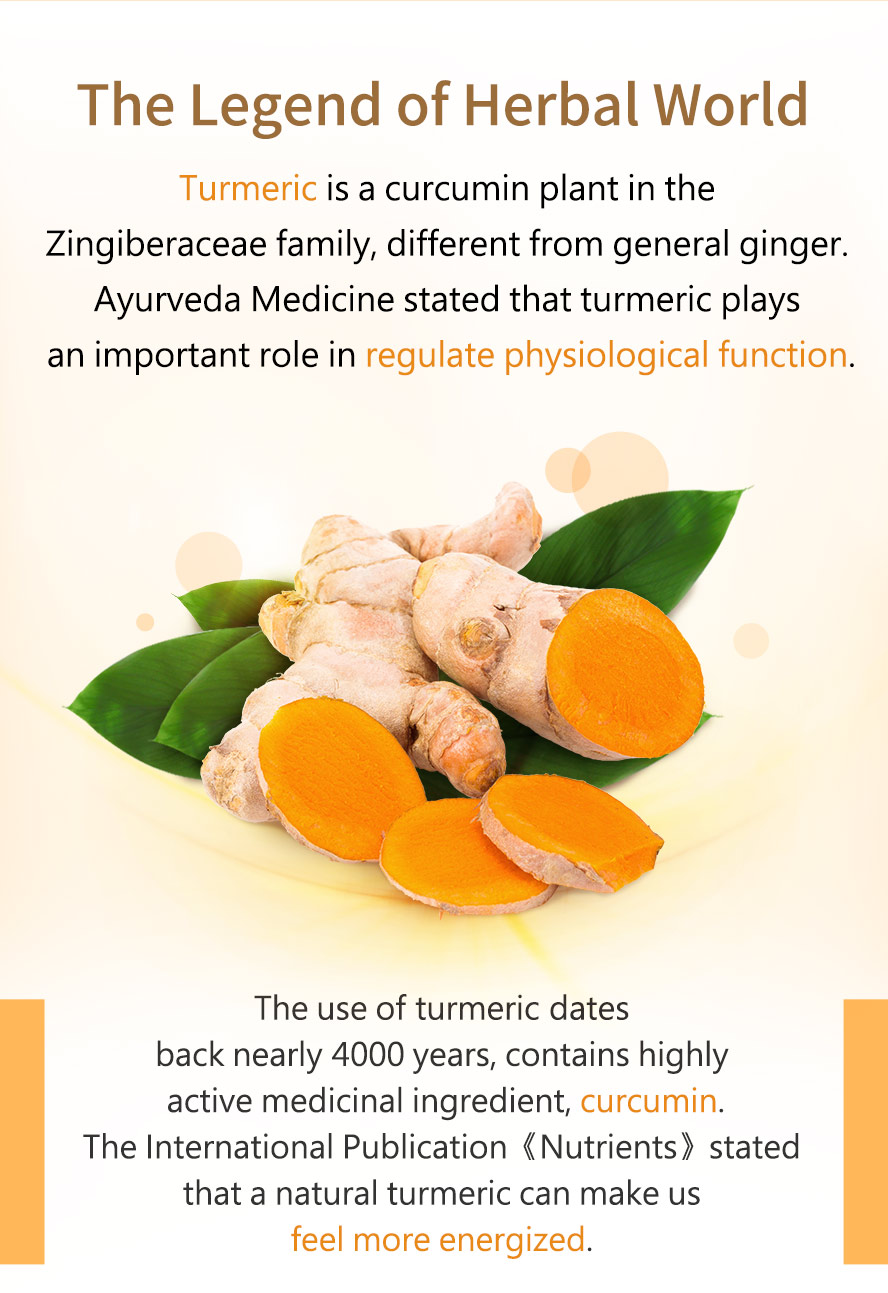 BHK's Turmeric Curcumin helps support the body's natural detoxification, liver, and cognitive functions.
