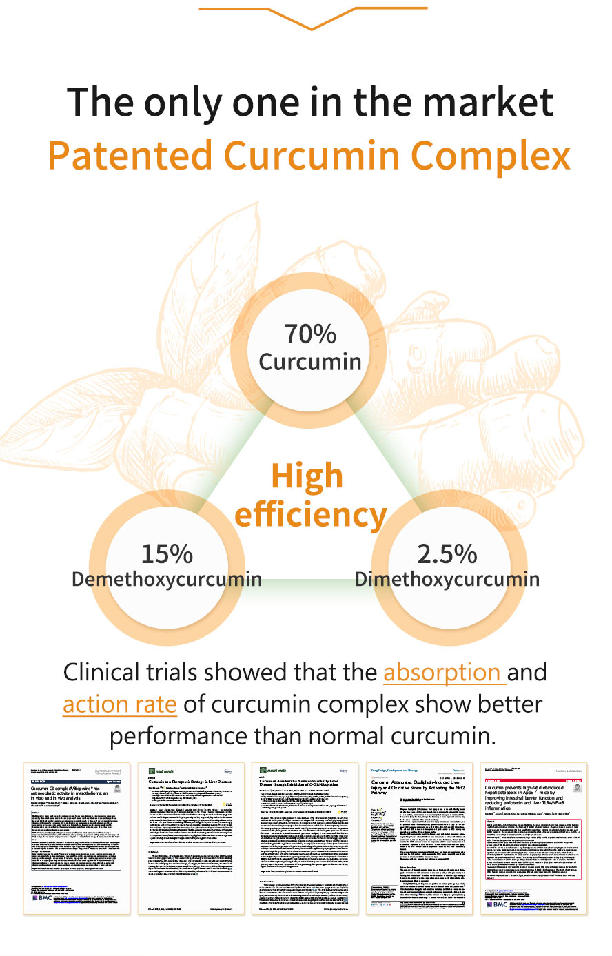 BHK's Turmeric Curcumin has the highest absorption and contains curcumin, artichoke, leafflower and black pepper.