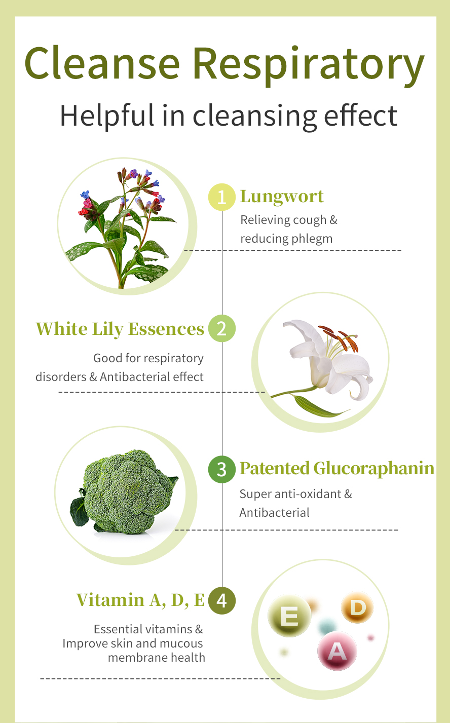 BHK Lungwort uses lungwort, glucoraphanin, lili bulbus and vitamin A, vitamin D and vitamin E. Promotes healthy lung function
