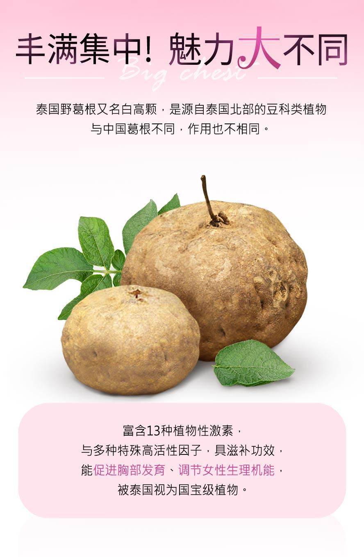 泰国野葛根又名白高颗,与中国葛根的作用不同,含13种植物性雌激素、高活性因子,可以有效刺激乳房二度发育,帮助罩杯升级。