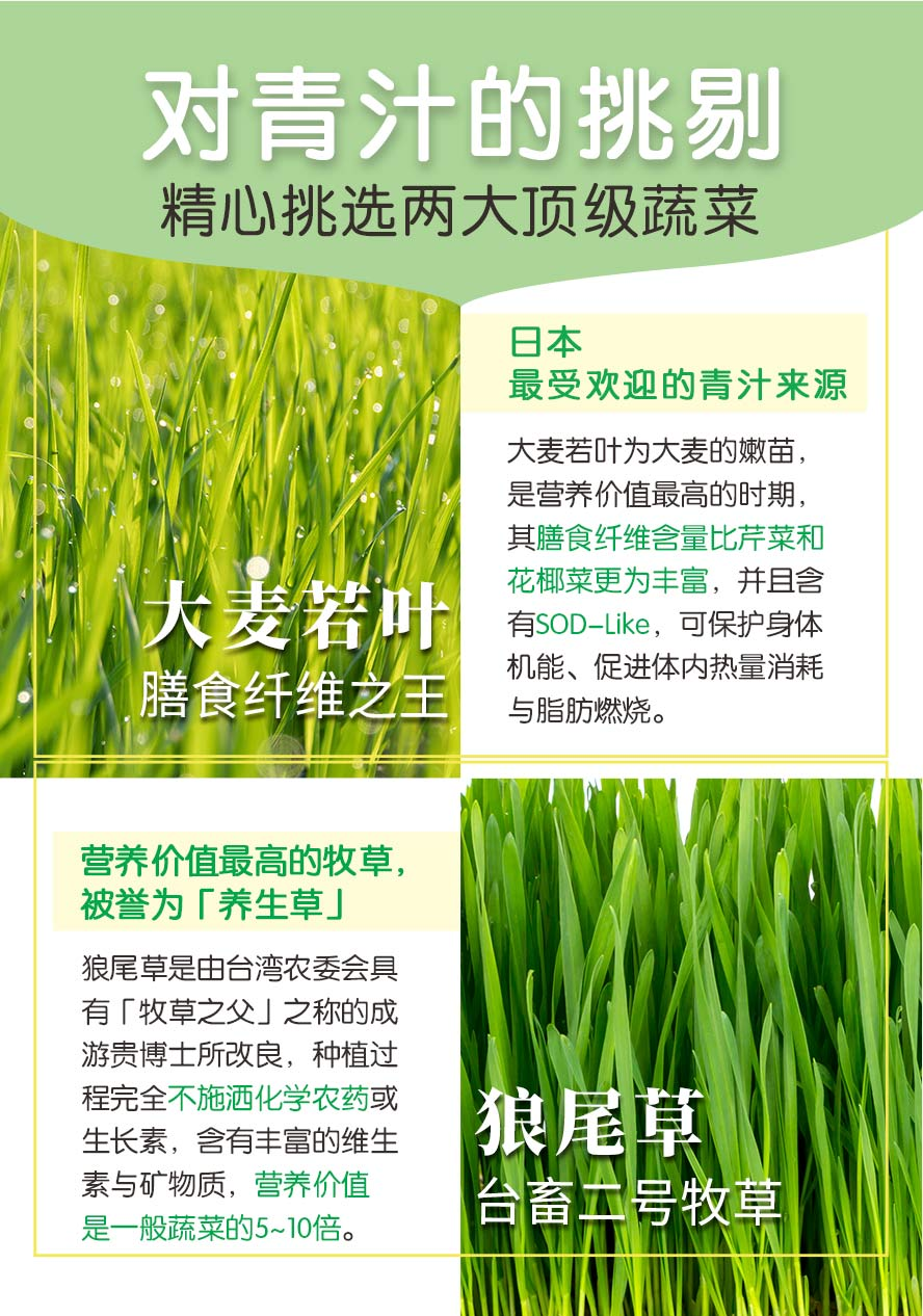 BHKs青汁酵素锭采用顶级两大蔬菜,日本大麦若叶,营养价值最高的狼尾草.