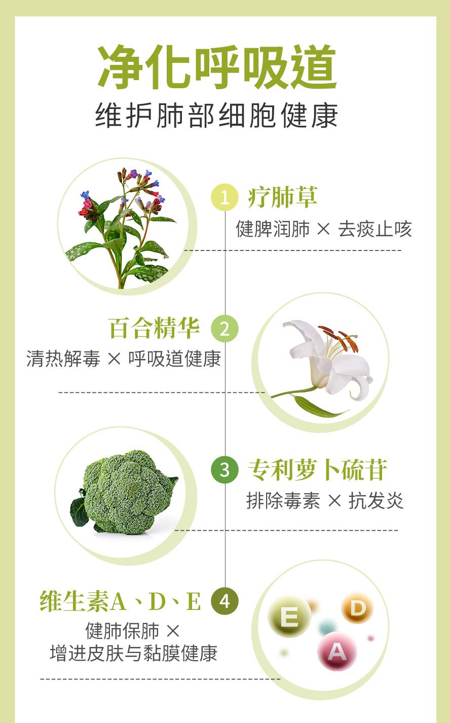 BHK疗肺草采用疗肺草萃取物,百合浓缩粉,专利萝卜硫苷以及维生素A,D,E,让体内空气清新.
