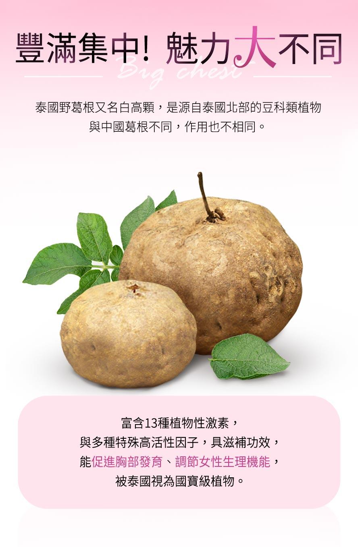 泰國野葛根又名白高顆,與中國葛根的作用不同,含13種植物性雌激素、高活性因子,可以有效刺激乳房二度發育,幫助罩杯升級。