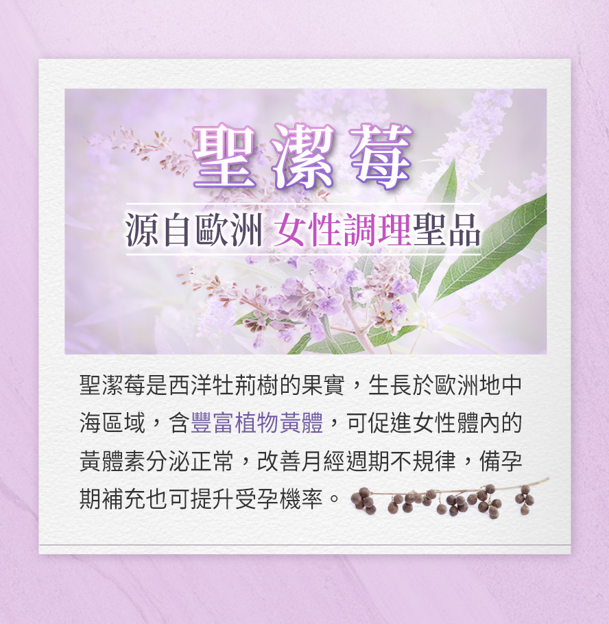 BHK's聖潔莓是一種天然植物,西洋牡荊樹的果實,可調節女性生理
